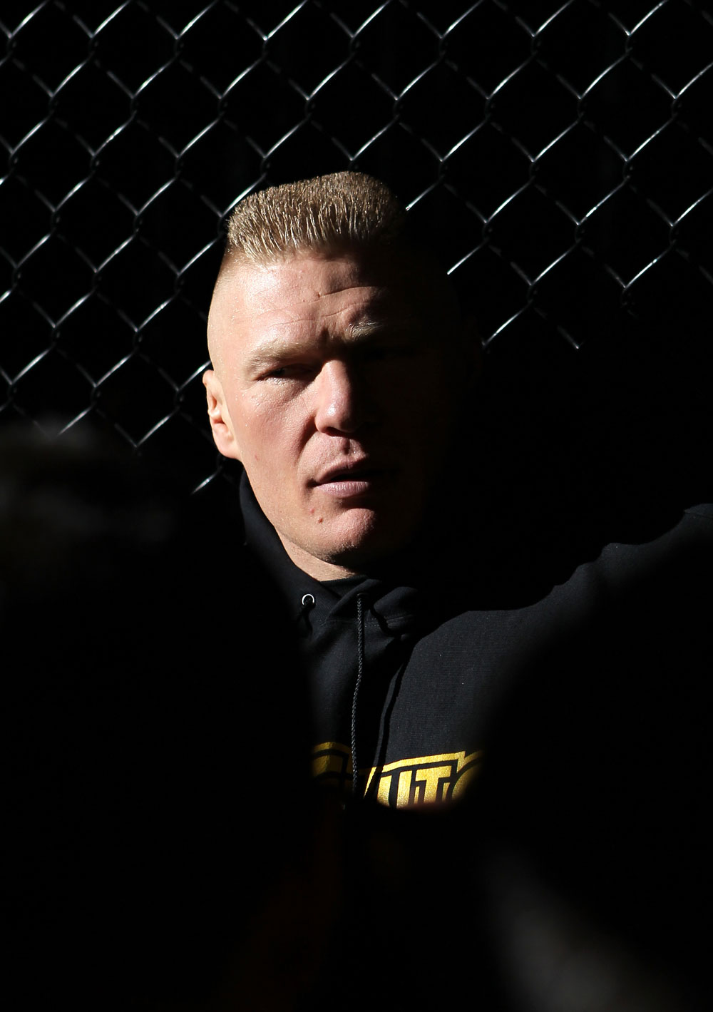 Former UFC heavyweight champion Brock Lesnar
