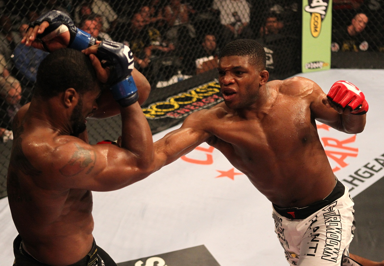Strikeforce welterweight Paul Daley