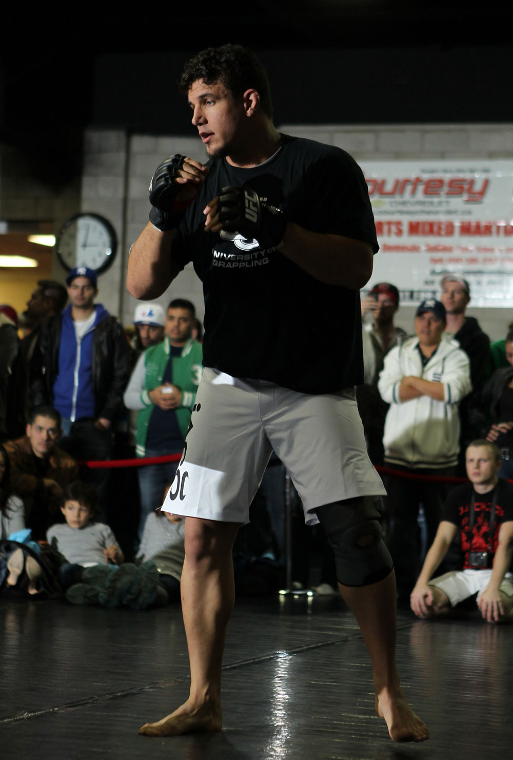 Former two-time UFC heavyweight champion Frank Mir
